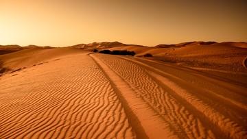 Sensacyjne odkrycie na Saharze. To sukces polskich naukowców