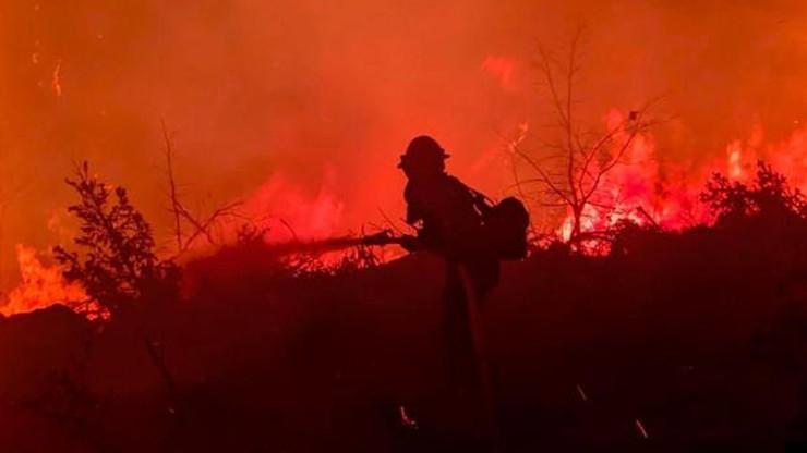 """USA. Tysiące strażaków walczy z olbrzymim pożarem w Kalifornii. """"To jest przerażające"""""""