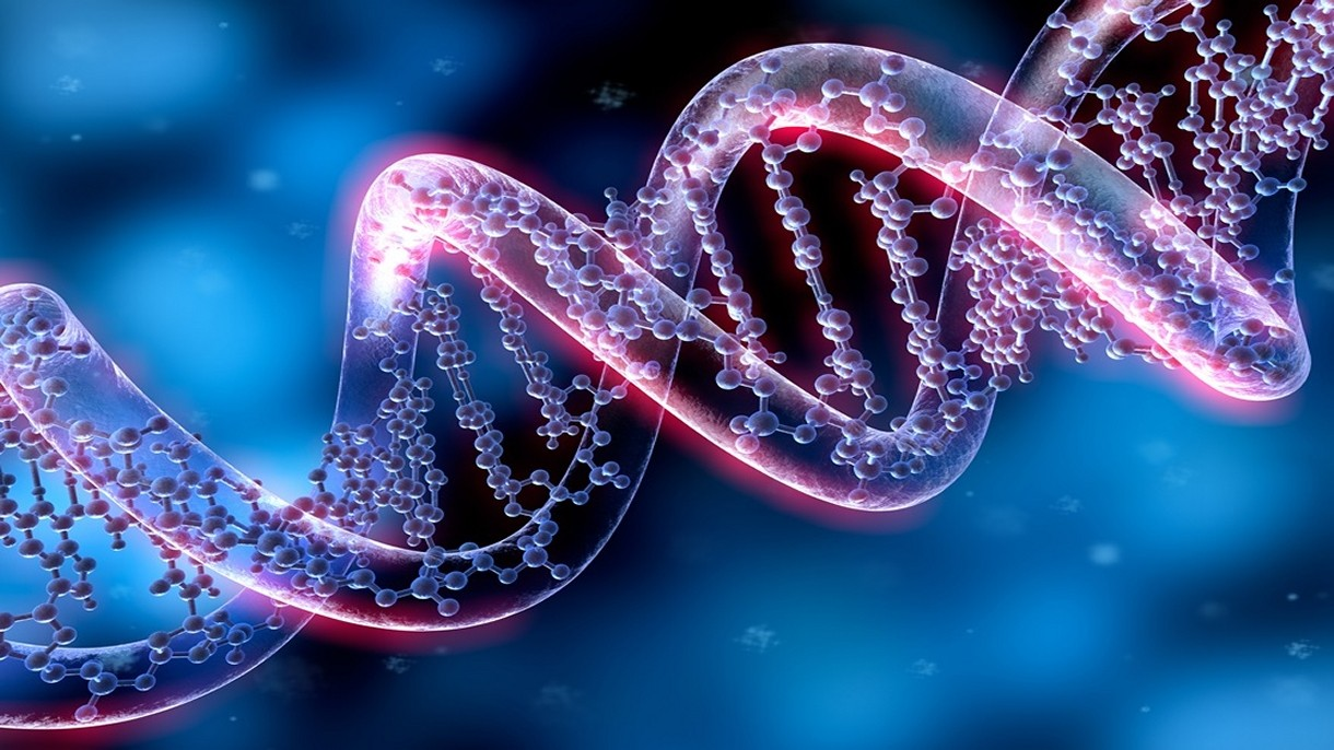 Informacje z RNA można wpisać z powrotem do DNA za pomocą nowej metody