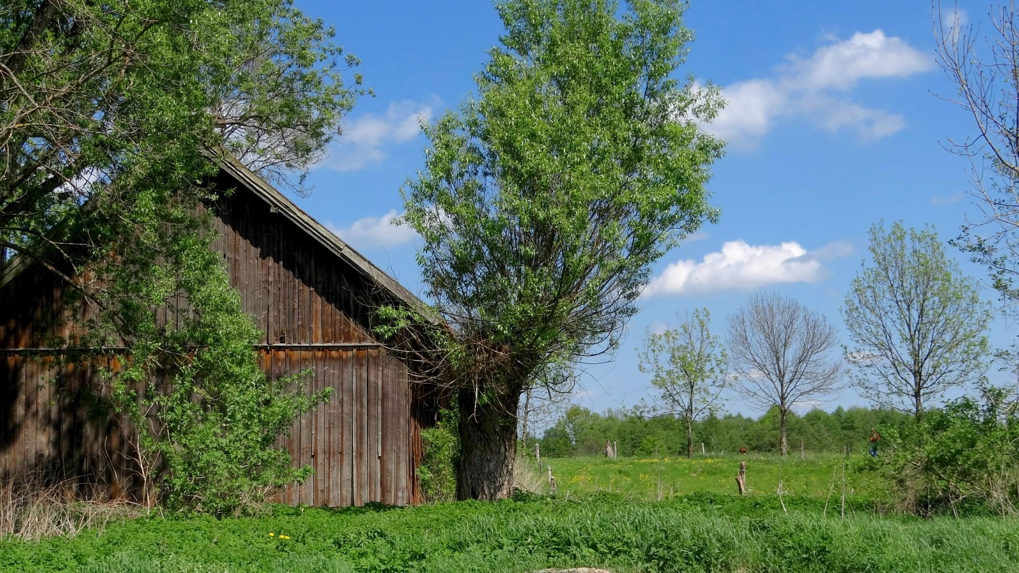 Mazury wiosną - zdjęcie 2