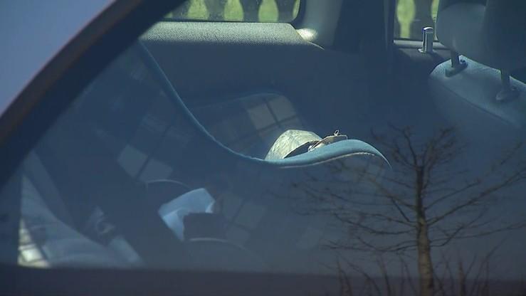Złodziej próbował ukraść samochód, w którym spało dziecko. Zauważyli go rodzice