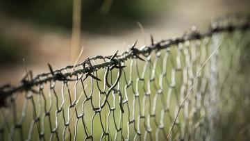 """""""Separatyści w Donbasie zbudowali sieć obozów pracy"""" - donoszą niemieckie media"""