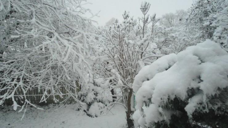 Śnieżny poranek w Białymstoku. Zima coraz bliżej