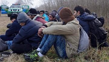 Czechy: Unia musi deportować część uchodźców