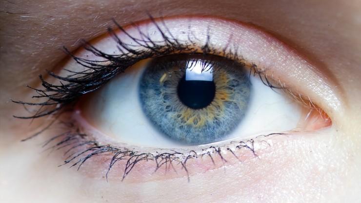 Nowy mechanizm w oku. Chroni przed słońcem jak żaluzje
