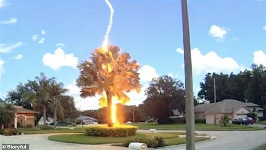 Grom z jasnego nieba na Florydzie. Fot. YouTube / Storyful.
