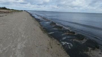 """Ostrzeżenie przed kąpielą w Mikoszewie. Bałtycką wodę badano po awarii """"Czajki"""""""
