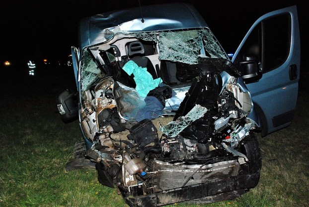 Najpierw łosia uderzył kierowca Fiata Ducato, który jechał w kierunku Gdańska