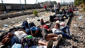 87 proc. Węgrów odrzuca kwoty relokacji migrantów