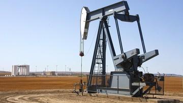Do rafinerii Grupy Orlen w Czechach i na Litwie trafi ropa z USA