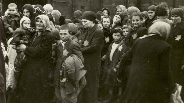 """Yad Vashem chce zmian w nowelizacji ustawy o IPN. """"Udział Polaków w mordowaniu Żydów był powszechny"""""""
