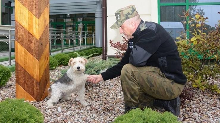 Bajtek 11 lat służył w Straży Granicznej. Właśnie odszedł na  emeryturę
