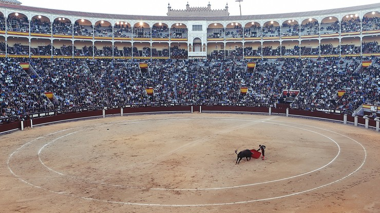 Hiszpania. Madryt planuje dużą imprezę. W planie m.in. walka z bykami