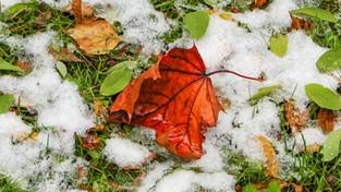 10.10.2021 06:00 W prognozach pojawił się pierwszy śnieg. Wiemy, kiedy i gdzie może zrobić się biało