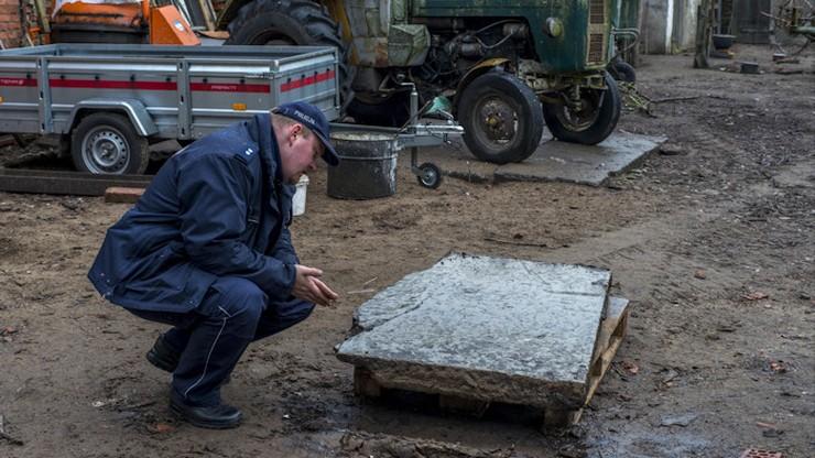 Barokowe płyty nagrobne odnaleziono po pół wieku. W kurniku. Służyły jako podest