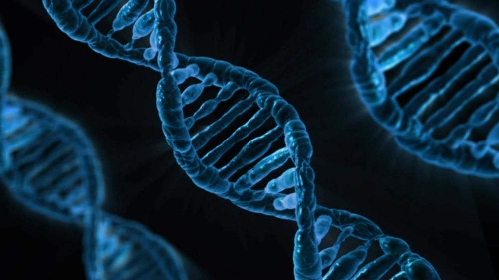 Policja z Las Vegas rozwiązała sprawę morderstwa z rekordowo małą ilością DNA