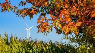 15.10.2021 05:57 Kolorowa jesień na Podlasiu i Mazurach. Zobacz, jak piękne są tam obecnie krajobrazy