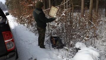 W lesie worki ze śmieciami. Właściciela ustalono bez trudu, bo wyrzucił dyplomy z nazwiskiem