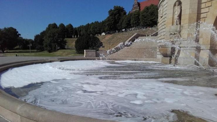 Sześć butelek płynu do mycia naczyń w fontannie w Szczecinie. Trzeba było wymieniać wodę