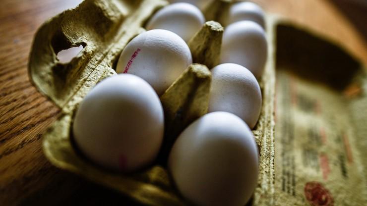Afera ze skażonymi jajami. Holandia odrzuca oskarżenia Belgii