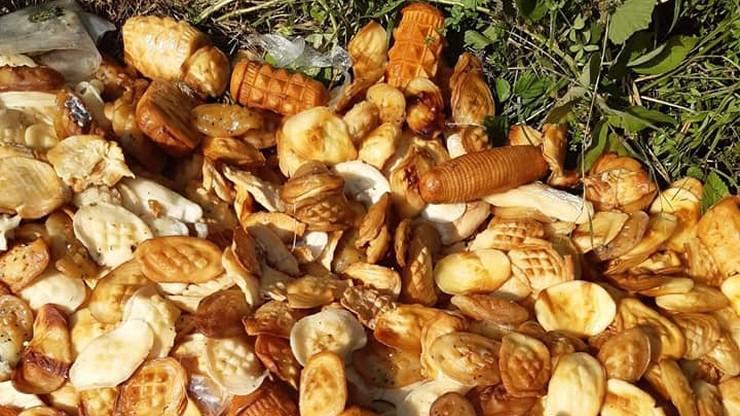 Bieszczady. Stos serów porzucono w lesie. Leśnicy: śmiertelne zagrożenie dla zwierząt