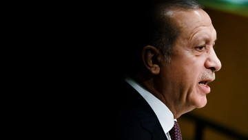 Erdogan namawia światowych liderów do działań przeciw Gulenowi