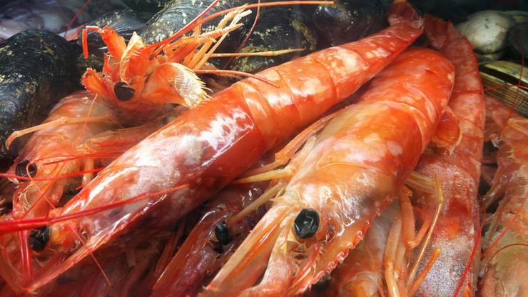 Dorada, halibut - nie kupuj tych ryb, jeśli chcesz pomóc przyrodzie