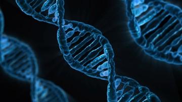 """""""AP"""": w Chinach urodziły się pierwsze dzieci ze zmodyfikowanym DNA. Mają być odporne na wirusa HIV"""