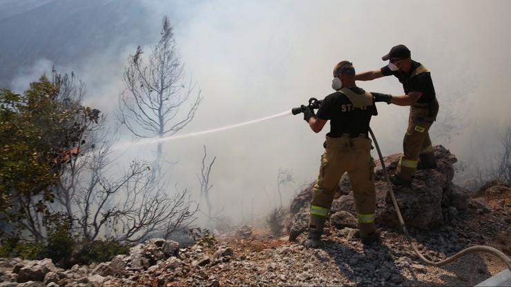 Pożary w Grecji. Polscy strażacy przedłużają misję