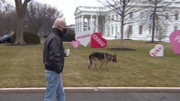 Roszady w Białym Domu. Odesłano... psy Joe Bidena