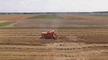 CBA zatrzymało siedem osób podejrzewanych o wyłudzenia unijnych dotacji rolnych