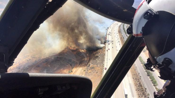 Pożary lasów w Kalifornii. Zagrożony rezerwat dzikich zwierząt
