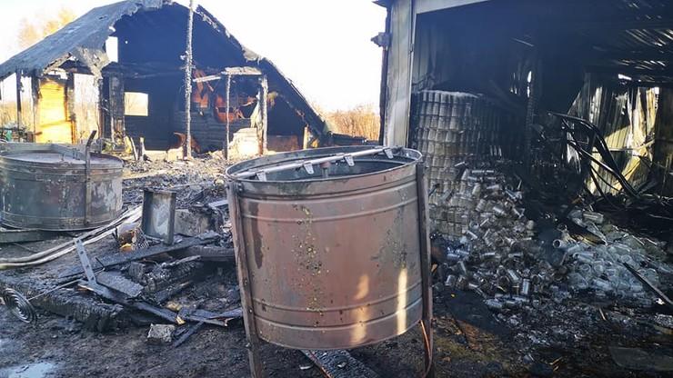 Pożar pasieki w Pabianicach