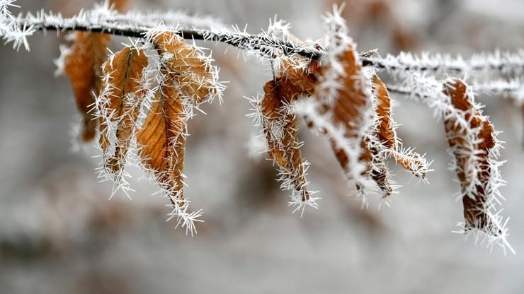 Chwycił mróz, miejscami nadal prószy śnieg. Powiew zimy w drugi dzień świąt