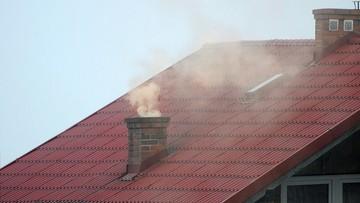 Zanieczyszczone powietrze przyczyną śmierci 9-latki. Historyczny wyrok sądu