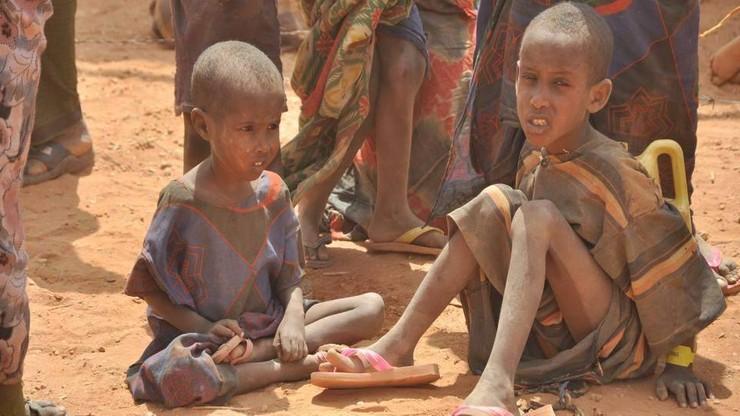 Rośnie liczba niedożywionych na Bliskim Wschodzie i Afryce Płn.