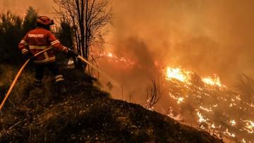 Portugalia: pożar z Leirii rozprzestrzenił się na sąsiednie dystrykty