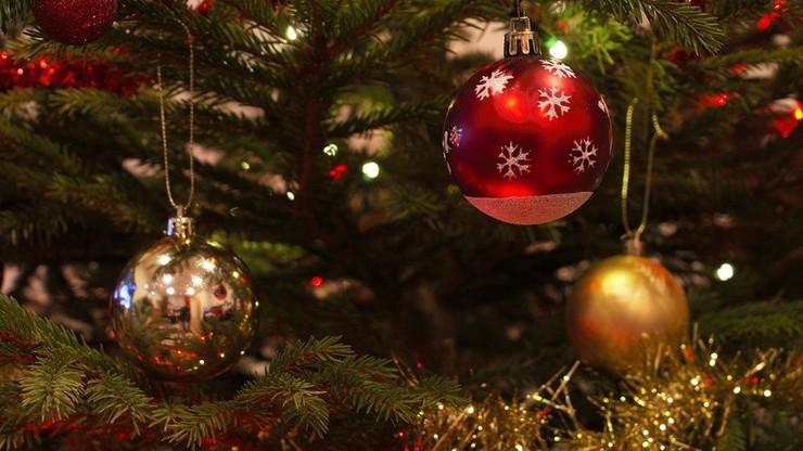 Toksyczne choinki, bombki i inne ozdoby świąteczne. Eksperci alarmują