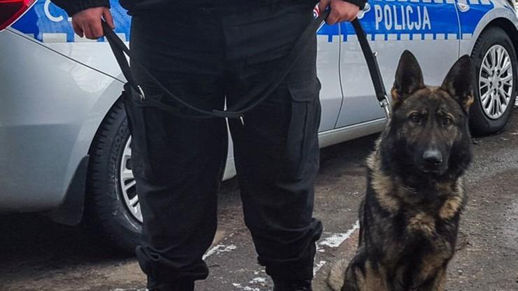Wezwała policjantów, bo chciała... żeby wyprowadzili jej psa. Groziła samobójstwem