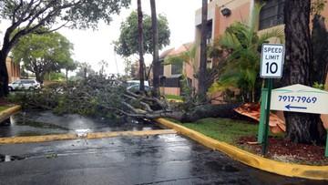 """""""Irma już tutaj jest"""". Pierwsze ulewy wyprzedzające nadejście huraganu dotarły do Miami"""