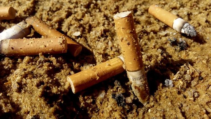 """Zakaz palenia na włoskich plażach. Po zebraniu w Bibione 0,5 mln """"petów"""" kolejne kurorty mówią dość"""