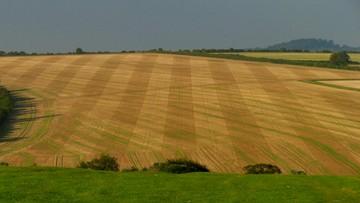 Sejmowa komisja rolnictwa poprawia ustawę o obrocie ziemią