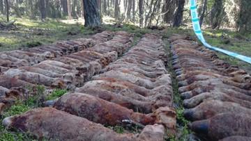 Arsenał w lesie na Mazowszu – ponad 200 kg materiałów wybuchowych