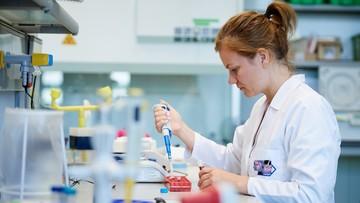Polacy pracują nad szczepionką przeciwko wirusowi Zika