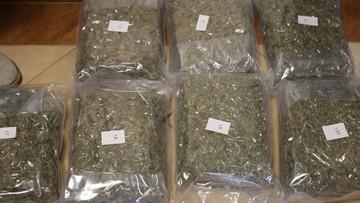 Uderzenie kryminalnych w narkobiznes. W Lublinie zarekwirowano 40 kg marihuany