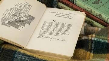Mapa Stumilowego Lasu z książek o Kubusiu Puchatku sprzedana za rekordową kwotę