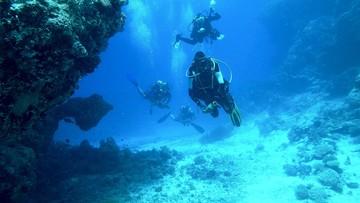 Znaleźli Enigmę. Zaskakujące odkrycie na dnie Bałtyku