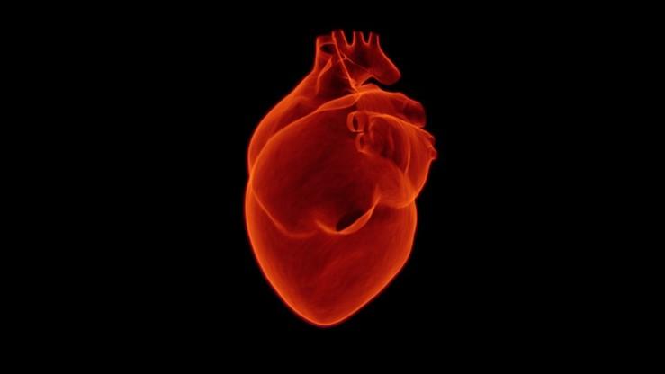 Pięciu polskich kardiologów wśród najczęściej cytowanych naukowców świata