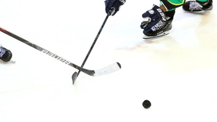NHL: Urodzinowy hat-trick Arvidssona