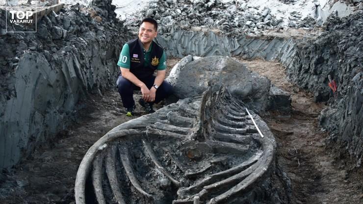 Tajlandia. Odnaleziono szkielet sprzed tysięcy lat